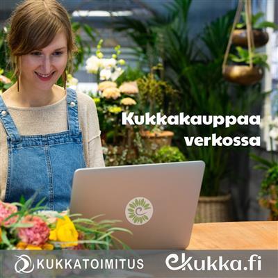 Helsingin kukkatoimitus Oy